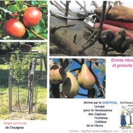 Jeudi 21 mars : suivi de la taille de formation des arbres fruitiers.