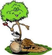 Planter, un acte fort !