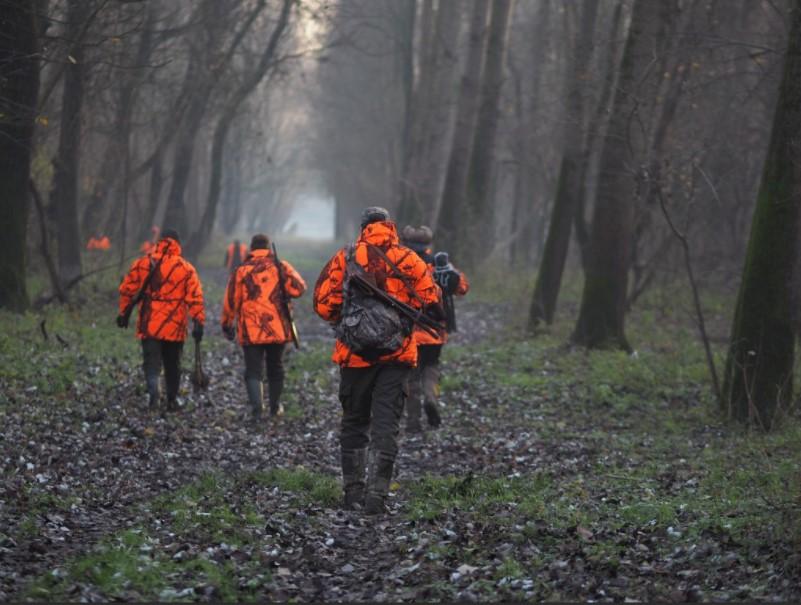 Location du droit de chasse en foret communale: dépôt des dossiers.